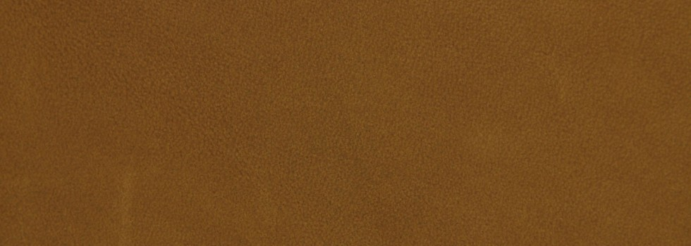 Misto aniline leather - 3399 camel