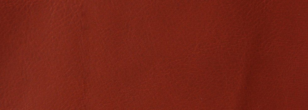 Misto aniline leather - 8799 piment