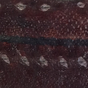 Diamond Sturgeon leather - Mocca